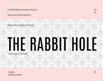 THE RABBIT HOLE |SOCIAL MEDIA CONTENT