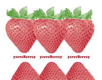 yerreBerrey - Generative Branding Concept