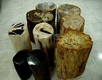 PETRIFIED WOOD PRODUCTS