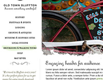 Old Town Blufton travel website design