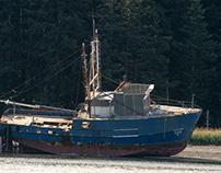 Alaska, Anton Larsen bay