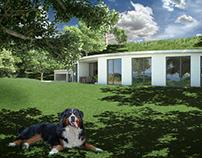 Ecohouse-earth sheltered house