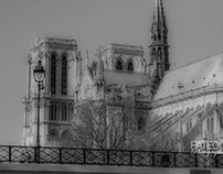 Paris, Cathédrale Notre-Dame.