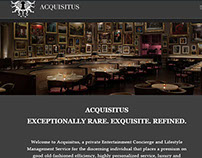 Acquisitus Website design