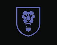 Sacramento Kings Redesign