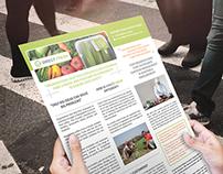 Flyer, Brochure, Ads - Direct Fresh