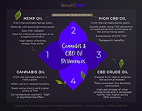 Cannabis & CBD Oil Differences Infogrpahic