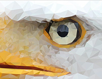 Low poly Hawk