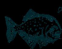 Piarnya   Single page website