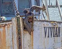 The Anchor of Vivian