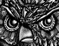 Charcoal Owl Sketch