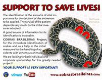 COBRAS BRASILEIRAS Project email sponsorship campaign.