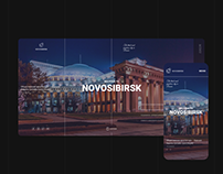 The Novosibirsk concept of town portal