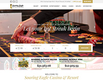 Soaring Eagle Casino & Resort Website Redesign