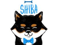 10 Shiba Inu Sleeping Poses ft. Poncho