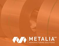 Web Design   Metalia MS