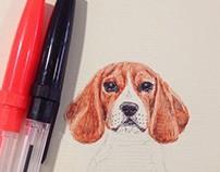 Biro Beagle