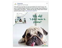 Social Media & Email Marketing for Pet Product