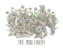 Farewell Card, Baby Bunnies (Commissioned)