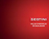 Apresentação empresarial Sestini