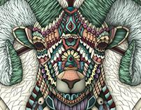 Ornate Bighorn Sheep