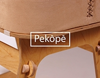 Download Design Project: Pekópé Baby Bassinet Design