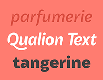 Qualion Text™ Type Family
