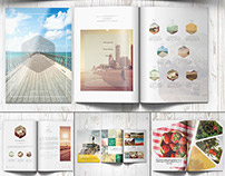 Multipurpose Clean Brochure Bundle