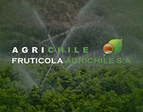 Agrichile / Ferrero