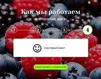 Сайт овощной базы