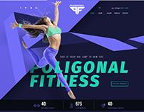 PolygonFit theme