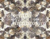 Fotografía Microscópica - Microscopic Photography