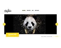 Webdesign / Music & Playlist