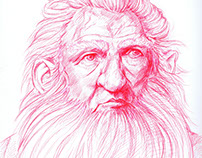 Ballpoint Pen Drawing - The Hobbit: Balin
