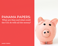 James Torpey Explains Panama Papers