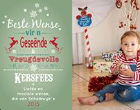 Baby Bears Christmass Cards
