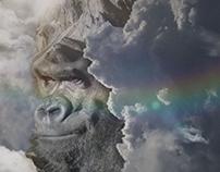 Ape in the cloud