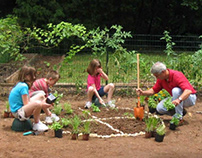 Tips to Help Prepare Your Garden for Planting Season