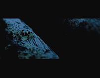 Montaña - Film