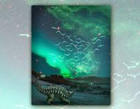Dinosaur Poster Artworks