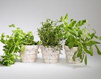 Colourful Ceramic Plant Pots
