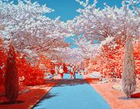 ULTRAColour Vol III - 'Spring' [Photo]