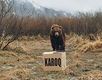 Škoda - Karoq