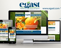Egast Website Design