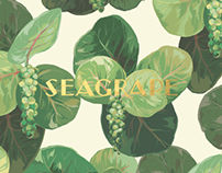 Seagrape Botanical Illustration