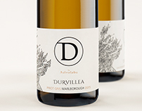 Durvillea | by Astrolabe Wines
