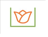 BloomBox Brand Identity
