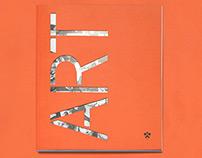 Princeton Art Book