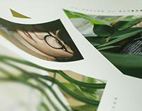 Eli Hsieh Live Concert 2016 |  Poster Design