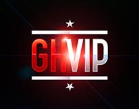 GHVIP 2016 - Linea gráfica